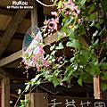 2008.06.07 - 新竹‧湖口老街