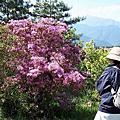 2007-05-07福壽山