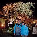 2011.4.4關西:醍醐寺、京都車站、白川巽橋夜櫻