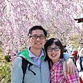 2011.4.6關西:嵐山、金閣寺、平野神社