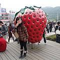 2010.01.01~大湖草莓趣