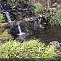 Crystal Springs Rhododendron Garden