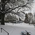 2008 SNOW IN HR