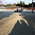 關西 2008冬-京都奈良大阪冷冷散策