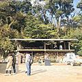 福岡糸島的秘境ー箱島神社與枯木海砂的海鹽布丁