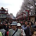 。2010-4月。日本筑波。一個人的旅行