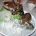 台九線龍蝦大餐20091109
