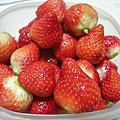 大湖採草莓20100117