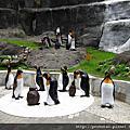 2010-07-26 台北市立動物園