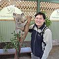 20130816-23 雪梨放暑假 動物園抱無尾熊