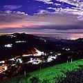 頂石棹茶園