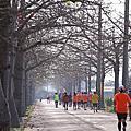 2014北頭洋走標路跑賽