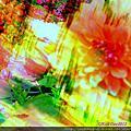影像重疊創作 075 --- 2012士林官邸菊花展數位影像創作