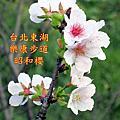2018.02.18   內溝溪自然生態步道樂康步道