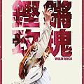 「鏗鏘玫瑰」電影海報與劇照