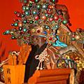 己丑年台疆城隍老爺聖誕祝壽