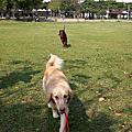 大寶的長腿妹妹~公園