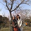 2008上海青浦梅園