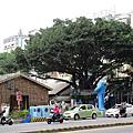 台南~藍晒圖
