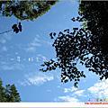 2010.8.14杉林溪8.5m
