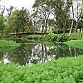 八德自然生態埤塘