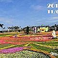 2013新社花海台中國際花毯節11月9日至12月8日