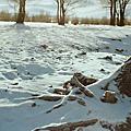 白雪茫茫蒙古國