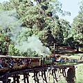 真實版湯瑪士小火車