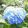 2011.10.22六號花園