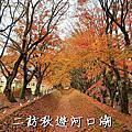 【旅行|主題】2019 二訪秋遊河口湖