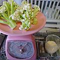 20120116【6M8D】第四種副食品--花椰菜米糊
