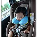 頸部安全旅行枕