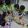 20160623【全職媽媽遛小孩-218】認識導盲犬,對視障者的關懷與尊重