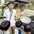 20181216【假日親子遊】苑裡有機稻場一日小農夫 大家一起來收割+玄米茶diy