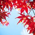 20121018天涼好個福壽山農場