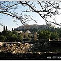 2011歐洲希臘二訪(古代亞哥拉)