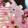 2017_生日賀卡
