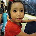 2010澎湖行台灣逍遙遊