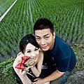 1126&0310 陳昱♥蓓玟Love婚宴.