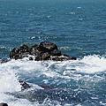 看.....海的聲音