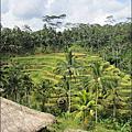 貴桑桑的峇里島之旅