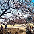 2015.03.27 我們在東京DAY4