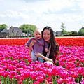 世界風情---荷蘭