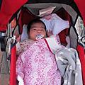 一家五口   寶島時代村  小叔結婚2012.10.12(13)