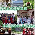 日本靜岡-玉露茶、抹茶、茶娘