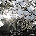 京都自由行2007