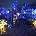 20150228台灣燈會在台中~豐原燈會