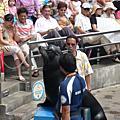 2008花東之旅Day3
