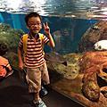 江之島水族館