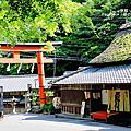 2014京都初綠